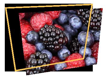 lofficina-del-gelato-frutta