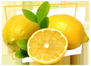 lofficina-del-gelato-limone